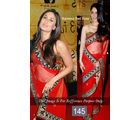 Bollywood Replica Kareena Kapoor Net Saree Velvet Border By Ragini Sarees, multicolor