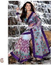 Net and Velvet Embroidered Saree