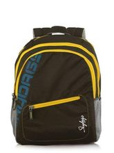 Skybags Stylish Backpack Neon-01, brown