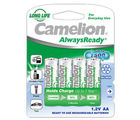 Camelion NH-AA1000 ARBP4 Rechargeable Battery, multicolor