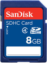 SanDisk Class 4 SDHC 8GB Card, blue