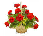 Red Carnation Basket (Carnations)