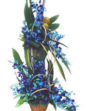 Blue Orchids Basket