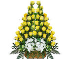 40 Yellow Roses Basket (Roses)