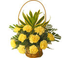 Carnation Basket (Carnations)