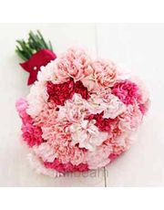 Lovely Bunch Of 15 Carnations Flowers For Love