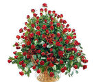 100 Red Roes Arrangement (Roses)