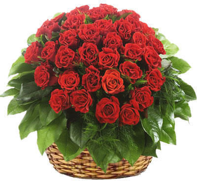 Get 17% Off on Lovers Choice Red Roses Basket Only Rs 1,347 [Infibeam] Heart2hearth2hflbs067e79c.jpg.f598171b38.999x400x368