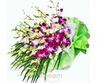 Exotic Orchids Bouquet (Orchids)