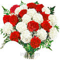 Red White Carnations Bunch