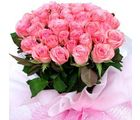 Pink Roses Bunch (Roses)