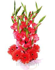 Natural Bunch Of Gerbera N Glads 4 Love Flower