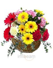 Basket Of 25 Carnations N Gerberas Flower Gift
