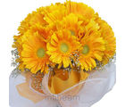Yellow Gerbera Bunch (Gerberas)