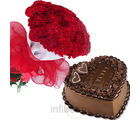 Chocolaty carnation