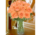 12 Peach Long Stem Roses (Roses)