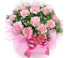 10 Pink Carnations Bunch (Carnations)