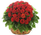 Thirty-Five Red Roses Basket (Roses)