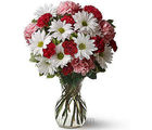 Love Bouquet (Daisies,Carnations)