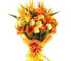 Exotic Treat (Bird of Paradise, Anthuriums, Lilies, Gerberas, Carnations)
