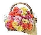 Special Basket of 25 Dutch Roses Flower Gift 173