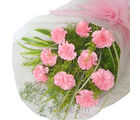 Pink Carnation Bouque (Carnations)