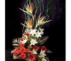Charm Of Midnight (Gerberas,Lilies,Bird of Paradise, Thane)