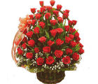 Fifty Red Roses Basket (Roses)