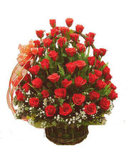 Fifty Red Roses Basket