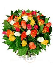 Fresh Bunch Of 28 Cute Dutch Roses Flower Gift