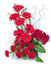 Fresh Gerbera N Carnation Roses Flower Basket