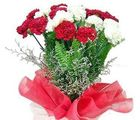 Red N White Carnations Bunch (Carnations)