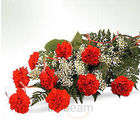 Bunch full of love (Carnations)