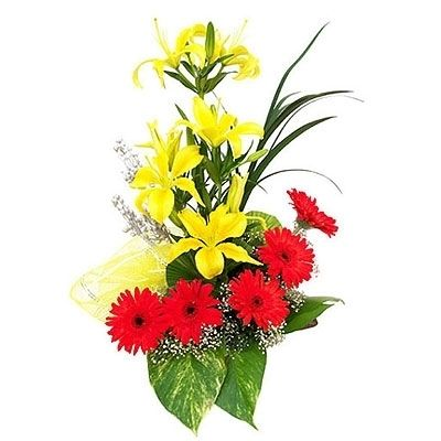 Basket of Cute Gerbera & Orchids Flower Gift 237