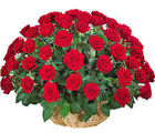 40 Red Roses Round Basket (Roses)