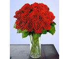 12 Red Long Stem Roses (Roses)