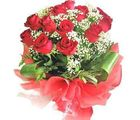 Charming Red Roses (Roses)