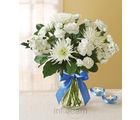 1-800-Flowers Magical Moonlight Classic (Carnations)