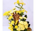 Health Is Wealth (Lilies, Carnations, Gerberas)