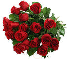 20 Red Roses Bunch (Roses)