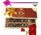 Chocholik Divine Treat To Your Friend With Rose And Card - Belgium Chocolates
