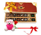 Chocholik Finest Chocolate And Truffles With Teddy and Rose - Belgium Chocolates