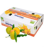 Greencart's Alphonso - Devgadh Premium (Express Product), pack of 12