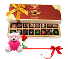 Chocholik Joyful Combination Of Dark And Milk Chocolates With Teddy and Rose - Belgium Chocolates