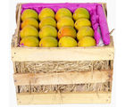 Kesar Mango Peti, pack of 48