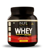 INLIFE Whey Protein 1Lb Vanilla Flavour