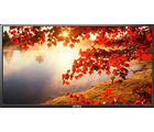 Intex 3220 32 Inch HD LED TV, black