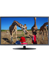 42L31 42 Inch I Grasp LED TV, black, 42