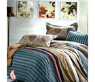 A Striper Print And Floral Accents Cotton Bed Sheet Set BS139116, multicolor