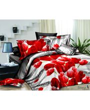 Story King Size Lovely Roses Double Bed sheet IM1055, multicolor